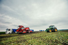 Truck and Excavator harvest off. Royalty Free Stock Photography
