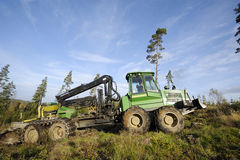 Truck and forest clearing Royalty Free Stock Images