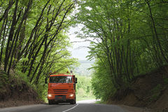Truck on the forest road. Big orange industrial transport on road spring forest Royalty Free Stock Photo