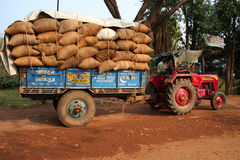 A truck full of crops. In bags is on the way to market from go down beside field in India Stock Images