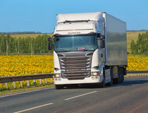 Truck goes on highway. Big white truck moves on highway along field of sunflowers Royalty Free Stock Photography