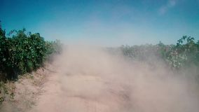 Truck with dust in its back. Truck leaving dust in its back among vineyard stock video