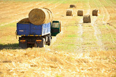 Truck loaded with hay bales Royalty Free Stock Image
