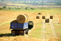 Truck loaded with hay bales Stock Images