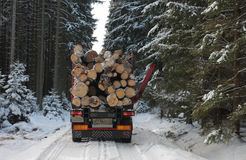 Truck with log in road in forest in winter Stock Photo