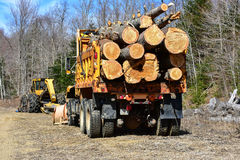 Truck with logs and log skidder stock photography