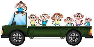 Truck and monkeys Royalty Free Stock Images