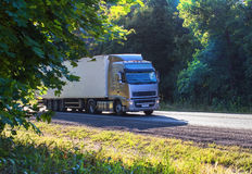 Truck moves on highway Royalty Free Stock Image