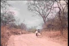 Truck narrowly missing woman with suitcase walking on dirt road stock footage