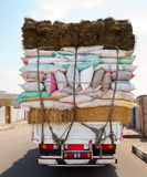 Truck overloaded bags Stock Images