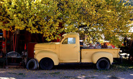 Truck Relic. Old truck parked beneath a cottonwood tree Stock Photography