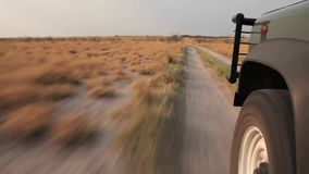 Truck ride across the steppe in Kalahari. stock video footage