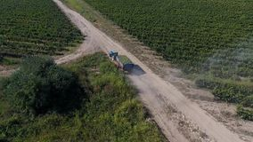 Truck among rows of vineyard before harvesting. Rows of vineyard before harvesting in Dobrogea, Romania Europe, aerial view from drone. Truck driving through stock video footage
