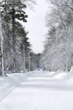 Truck Driving down thickly snow covered suburban Road Stock Photography