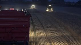 Truck stand on stubble and harvester machine with lights cultivate cereal corns field at night. 4K. Truck stand on stubble and harvester machine with lights stock video footage