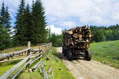 Truck transportations a felled forest in the mountains. Deforestation. Truck transportations a felled forest in the mountains. Nature. Deforestation Stock Image