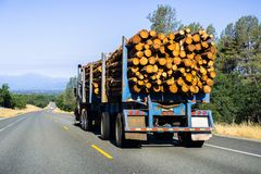 Truck transporting logs near Redding, California stock image