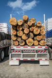 Truck transporting logs. Of woods with a nice blue sky Stock Image