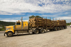 Truck transporting Wood. Royalty Free Stock Photos
