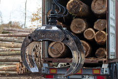 A Truck with tree trunks and crane Royalty Free Stock Photography