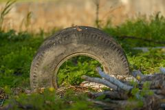 Truck tyre in the mud Stock Photos