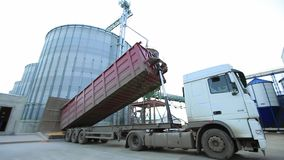 Truck Unloading Grain into Elevator. Unloading corn into the grain silo stock video