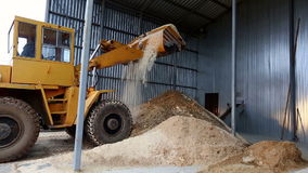 Truck unloading sawdust in territory of sawmill. View on loader unloading sawdust in territory of sawmill stock footage