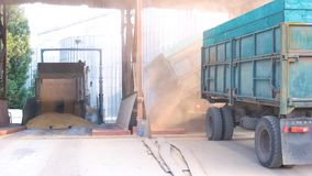 Truck Unloading Wheat Grain In Warehouse. Royalty Free Stock Photography