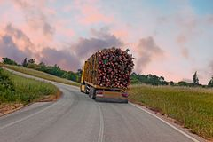 Truck with wood driving in the countryside from Portugal Stock Photos