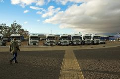Truck Yard. Fleet of trucks parked in the yard with a driver walking past stock photo