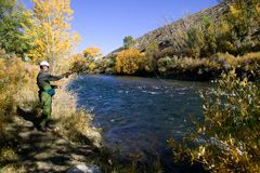 Truckee River Fly Fishing Stock Photo