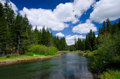 Truckee River Rafting. The side way when you go to Lake Tahoe. this river a lot of people come and rafting in Summer,California royalty free stock images
