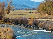 Truckee River till och med Wadsworth, Nevada Arkivfoton