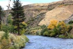 Truckee rzeka Zdjęcie Royalty Free