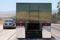 Truckful de pamplemousse Image libre de droits