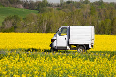 These trucks, called. Italian typical means of transport in a field of flowers Royalty Free Stock Photo