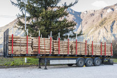 Trucks charged with wood logs waiting for delivery Stock Photos