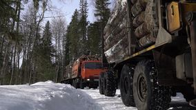 Trucks loaded with timber move out of forest stock footage