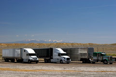 Trucks on parking. In background visible snow capped mountains Royalty Free Stock Photos