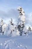 trudno śnieg Obraz Stock