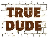 True Dude printed on stylized brick wall. Textured humorous inscription for your design. Vector. Illustration royalty free illustration