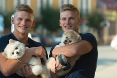 True joy of just being around. Spitz dogs love the company of their family. Happy family on walk. Twins men hold. Pedigree dogs. Muscular men with dog pets stock image