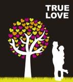 True love Royalty Free Stock Photos