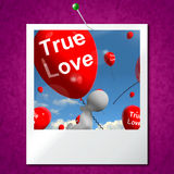 True Love Balloons Photo Represents Couples and Lovers Stock Photo