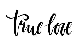 True love. beautiful Hand drawn lettering isolated on white background Royalty Free Stock Images