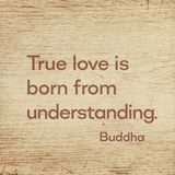 True love Buddha wood. True love is born from understanding - famous quote of Gautama Buddha printed on grunge wooden board royalty free stock photography