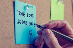 True love never dies. Closeup of male hand writing True love never dies phrase on blue post it paper on cork bulletin board, retro effect faded look Royalty Free Stock Images