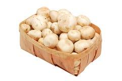 True mushroom in basket. Fresh raw mushroom (champignon) in basket on white background Royalty Free Stock Photography
