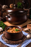 True North German mock turtle soup with mushrooms Stock Photography