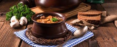 True North German mock turtle soup with mushrooms Stock Image